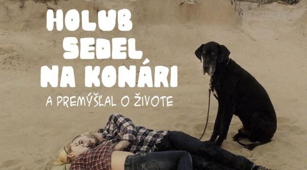 HolubNaKonari-posterA1-SK